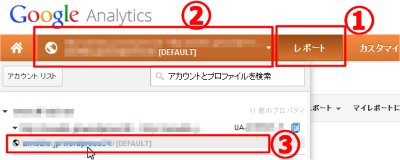 Google Analytics レポート参照